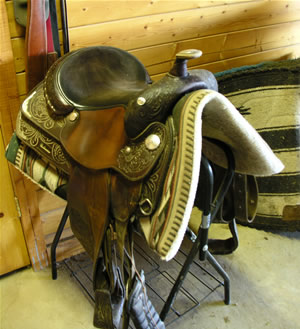 Horse Properties in St. George - tack room